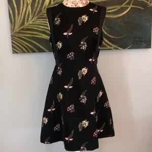 Ted Baker London Short Black Floral Dress